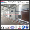 Prefabricated Chicken House Poultry House