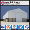 Economic Cost Steel Structure Warehouse (SS-318)