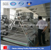 Professional Galvanized Wire Cages for Chicken Bird/Layer Chicken Cage