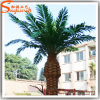 Customized Artificial Plastic Date Palm Trees