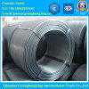 GB 08f, 10#, 15#, SAE 1008, 1010, 1015 Carbon Steel Wire Rod with Good Quality