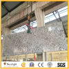 Popular Bianco Antico Silver Color Granite Slabs for Tiles, Countertops