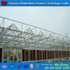 New Double Layer Glass Agricultural Green House for Tomato