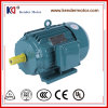 Y2 Series Universal AC Asynchronous Motor