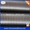 All Sizes Flexible Metal Hoses with Fitting and Braidings