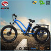 Three Wheel Alloy Frame Electric Fat Tire Cargo Tricycle