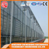 Agriculture Prefabricated One Stop Gardens Glass Green House
