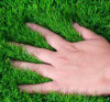 Synthetic Turf with High U/V Resistance for Decoration, Garden, Landscaping
