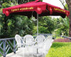 Hot Sell Promotion Economical Outdoor Umbrella