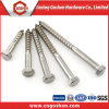 Stainless Steel DIN571 Wood Screw/Hex Lag Screw/Coach Screw