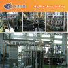 Turnkey Project for Glass Bottle Rice Wine Filling Line