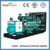 Fawde Diesel Engine Electric Generator Power Generator Set