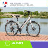 2014 New Ebike/ Electric Mountain Ebike with Alloy Frame