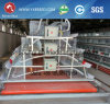 China 24 Years Old Manufacturer of Chicken Cage