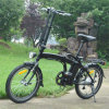 2017 20inch Folding 250W Electric Bicycle