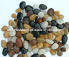 Polished Multicolor River Stone for Garden or Patio Paving