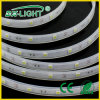 Cool White 30LED/M IP67 5050 Strip Lighting