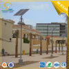 9W, 3metres Pole Solar Landscape Lights (SLL-S1)
