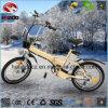 En15194 Electric Folding Bike for Sale