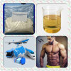 Male Steroid Hormone 6-Bromoandrostenedione for Body Building
