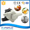 DC Stainless Steel High Temperature Beer Brewing Pump