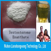 CAS 315-37-7 Bodybuilding Supplements Testosterone Enanthate High Purity Test