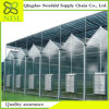 Manufacturer Sells High Quality Multi-PC Sheet Greenhouse