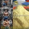 Wholesale Nutrition Steroids Hormone Nandrolone Cypionate CAS 601-63-8
