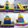 Inflatable Climbing Wall Inflatable Rock Climbing Slide (RB8047)