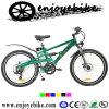 Suspension Eletric Bikes (QXE05Z-4)
