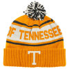 Knit Cuffed Beanie and Scarf Matched Set (D120)