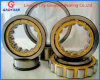 SKF Quality Cylindrical Roller Bearing (NJ205EM)