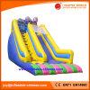 Inflatable Double Lanes Super Slide for Amusement Park (T4-199)
