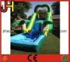 Hot Sale Inflatable Slide with Pool for Adults and Kids