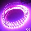 Waterproof Flexible RGB SMD5630 LED Strip Light