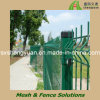 Wire Mesh Safety Fence Power Coated Ral6005 or HDG ISO9001, Low Price and High Quality