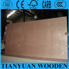 4*8ft One Time Hot Presed Commercial Plywood Okoume/Bintangor Faced Plywood