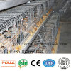Poultry Farming Equipment Pullet Chick Automatic Pullet Aframe Cages Poultry Cage Manufacturer / Supplier in China