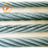All Size Galvanized Steel Wire/ Guy Wire