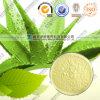 200: 1 Aloe Freeze Dried Powder/Aloe Vera Extract