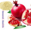 Pomegranate Juice Powder (Organic Fruit powder)