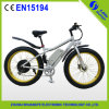 2015 Factory Price Electrc Fat Bike