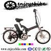 Superior Pocket Electric Bikes (QXN05Z-H)