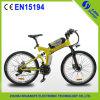 China CE En15194 High Carbon Steel Frame Electric Mountain Bike