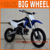 Hot Selling Crf110 Style 190cc Pit Bike