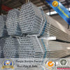 Galvanized Pipe Building Materials Galvanized Hollow Section