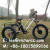 Cheap Price 3 Wheel Electric Bike Made in China