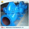 Large Volume Bronze Impeller Sea Water Pump in Double Suction