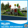 Best Seller Outdoor Playground Equipment (QL14-056C)