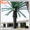 Factory Direct Outdoor Artificial Date Palm Tree